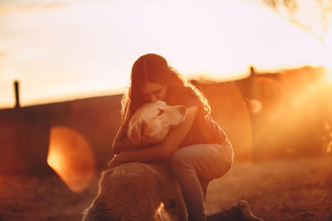 A person hugging a dog